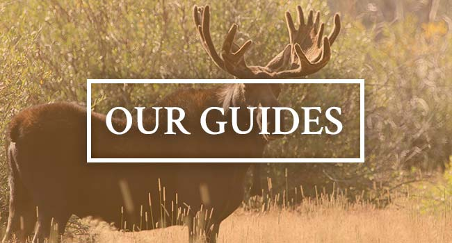 Ivory & Antler Outfitters Guides