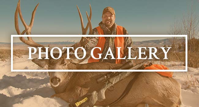 Ivory & Antler Outfitters Photo Galleries