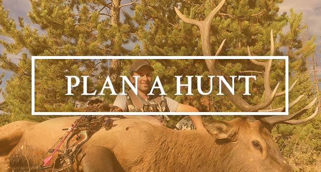 Plan a Trip with Ivory & Antler Outfitters