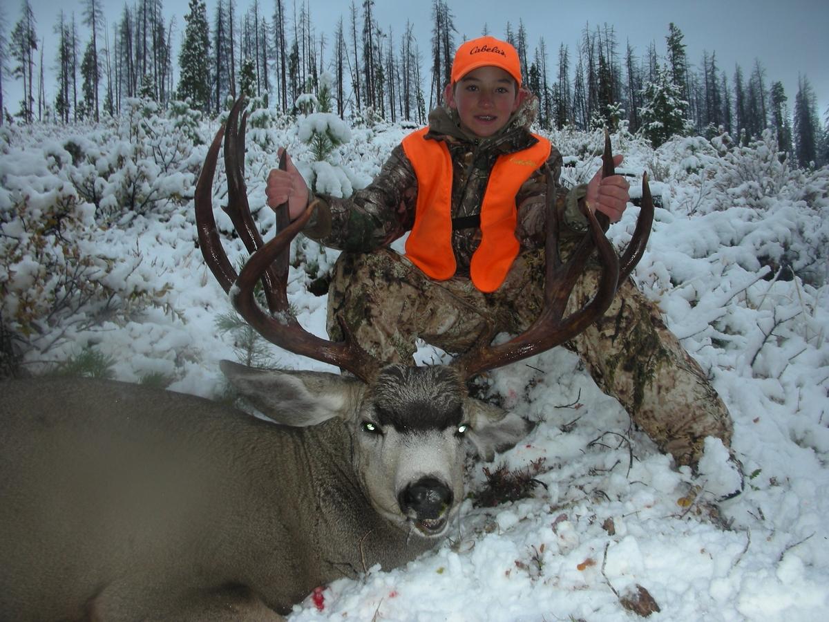 Colorado Mule Deer Hunts | Colorado Mule Deer Hunting
