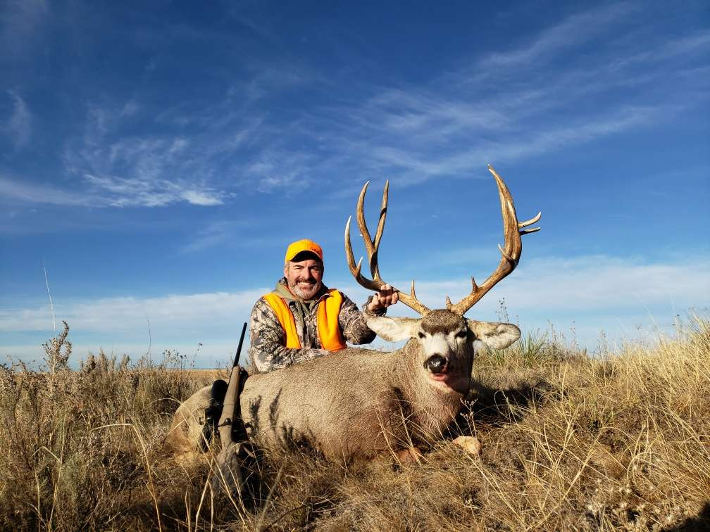 Fair Chase Mule Deer Hunts Colorado