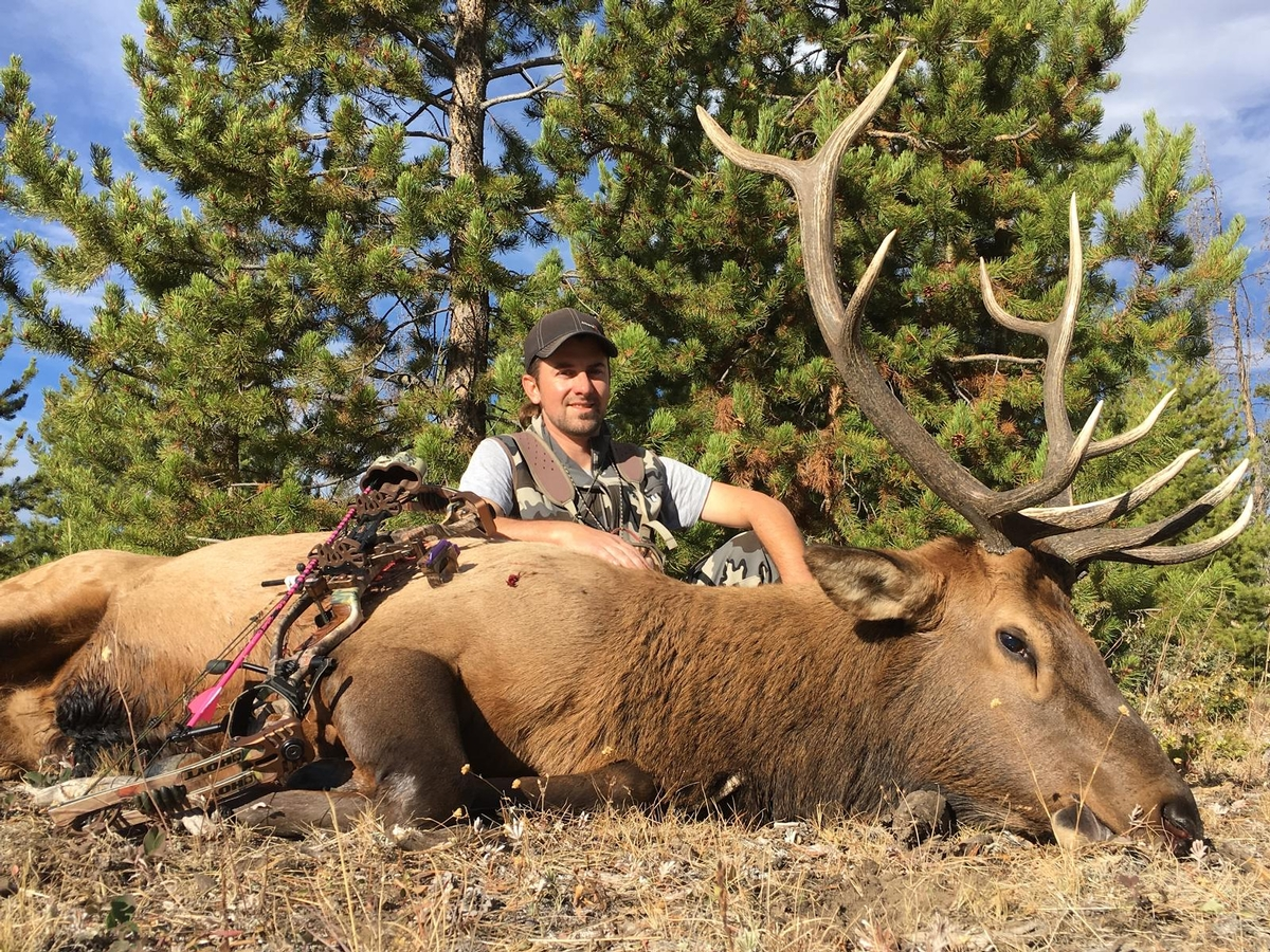 Trophy Colorad Elk Hunts
